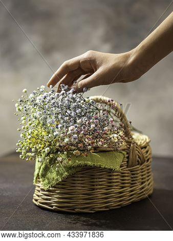 Wicker Basket Of Straw With Flowers And A Woman's Hand. Natural Eco Materials. Zero West.