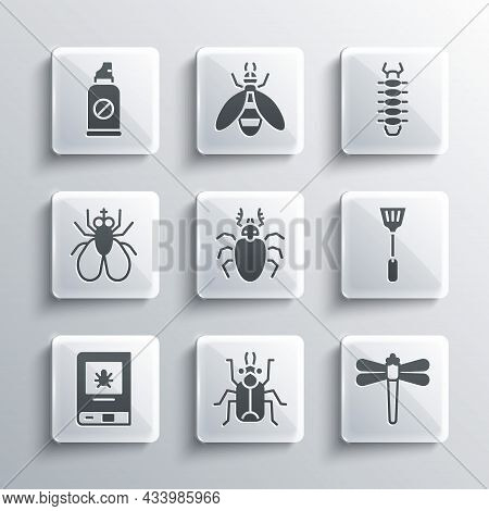 Set Beetle Bug, Dragonfly, Fly Swatter, Deer, Book About Insect, Insect, Spray Against Insects And C
