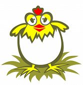 Cartoon funny chicken isolated on a white background. poster
