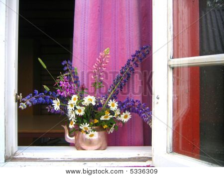 Sommer Window