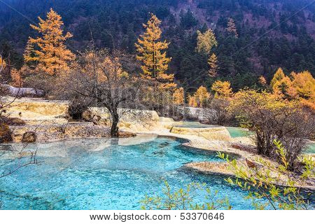Travertine Ponds In Autumn Forest