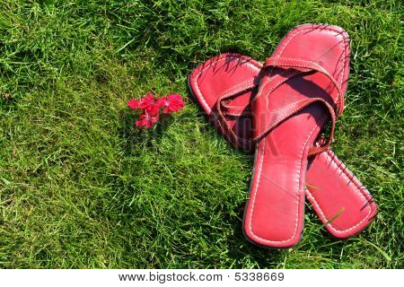 Red Shoes On Grass