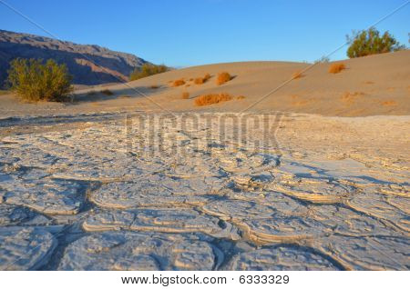 Desert Salt Pan