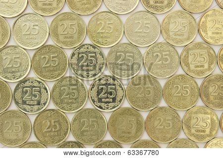 Twenty Five Turkish Money