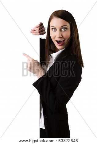 Businesswoman Showing Blank Signboard