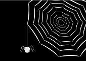 image of white spider and web on black background poster