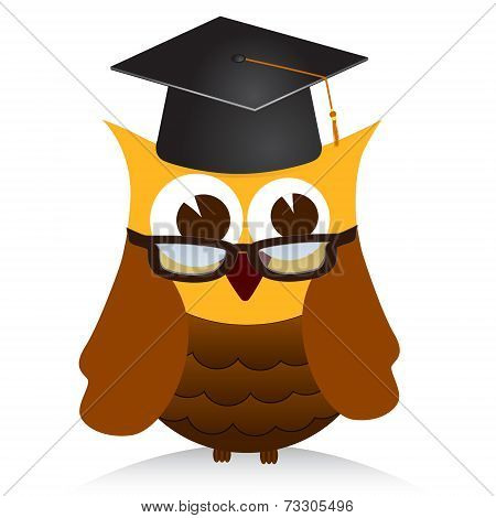 Vector illustration of  wise old owl on white poster