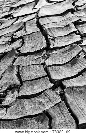 Dried rivers of mud from Mud Volcanoes Buzau Romania poster