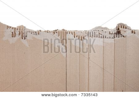 Piece Of Torn Cardboard