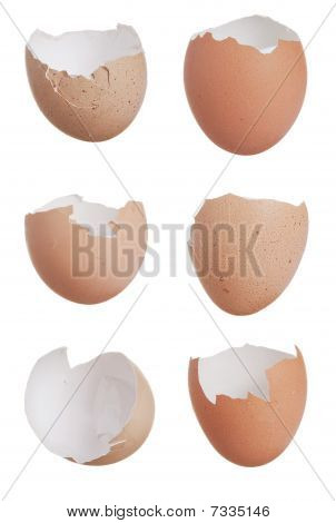 Six Broken Egg Shells