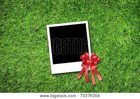 Photo Frame On Grass