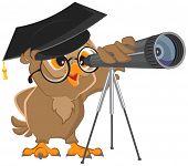 Owl astronomer looking through a telescope. Vector cartoon illustration poster