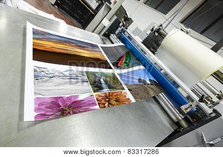offset machine roll laminator in print shop