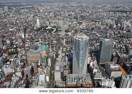 Tokyo Bird's Eye View
