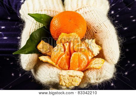 Hands In Knitted White Mittens Holding Tangerines