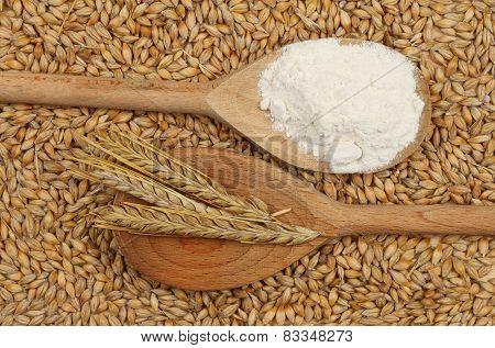 Barley And Flour