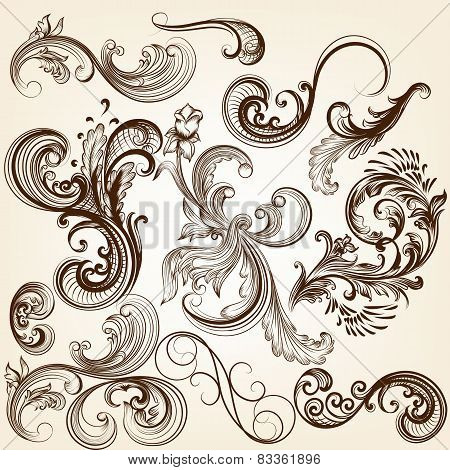 Collection Of Vector Decorative Floral Calligraphic Elements