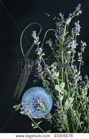 Blooming Mint, Scissors And Thread On A Dark Background