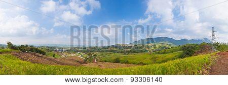Panorama Forest Destruction