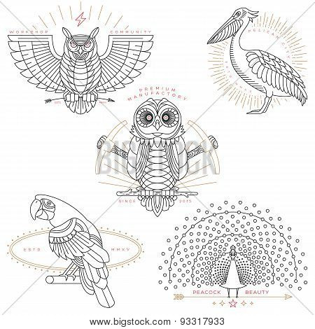 Bird Labels & Badges