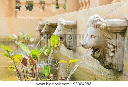 The Decorate Garden.