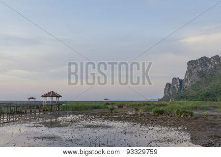 The Landscape Nongbuadaeng.