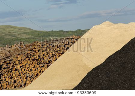 Logs And Wood Chips