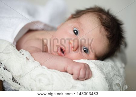 Cute small baby - discovery on light background