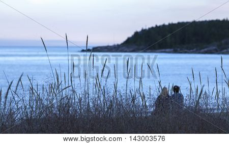 BALTIC SEA, SWEDEN ON JULY 21. View of Lyme grass on a sandy seashore on July 21, 2016 by the Baltic Sea, Sweden. Unidentified couple on the shore. Baltic Sea in the background. Editorial use.