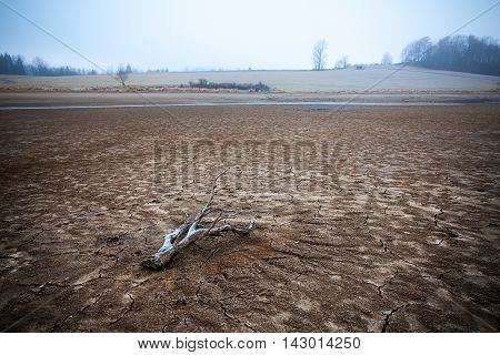 Lowland with dried pond in the frost cracked frozen ground and a log.