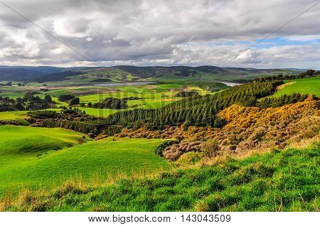The Countryside Near Slope Point, New Zealand