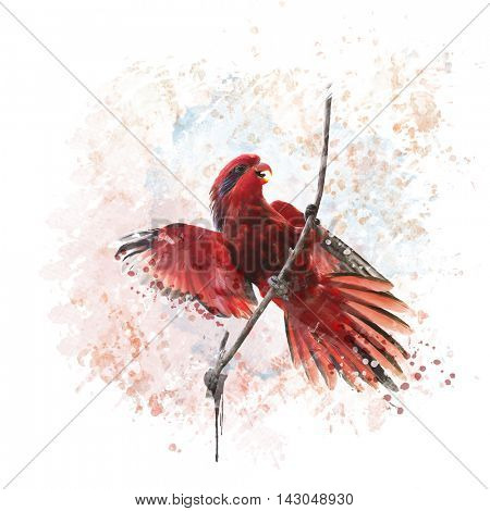 Digital painting of Blue-streaked Lory  poster