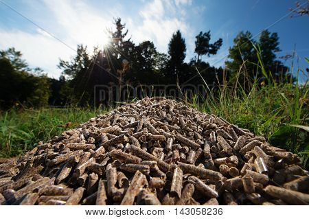 Pile of wooden pellets lying on meadow againts forrest and blue sky in the background. Wooden pellets biomass effective environmentally friendly and economical heating sustainable and renewable energy