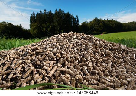 Pile of wooden pellets lying on meadow against forrest and blue sky in the background. Wooden pellets environmentally friendly and economical heating sustainable and renewable energy