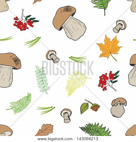 Mushroom Hand Drawn Sketch Seamless Pattern. Vector Illustration