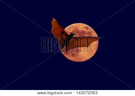 Halloween night with bat flying over the red moon