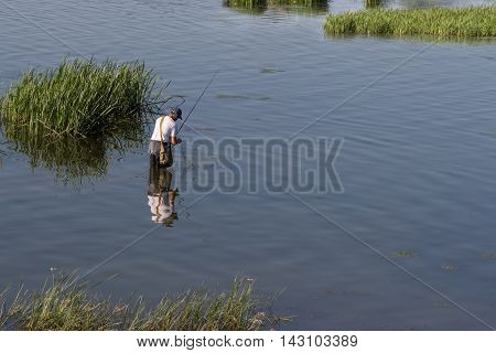 Fisherman catches a fish in the Volga peals. Fisherman caught the old fishing net of poachers.