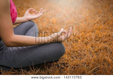 Yoga in the park, The concept of maintaining a healthy body and mind.