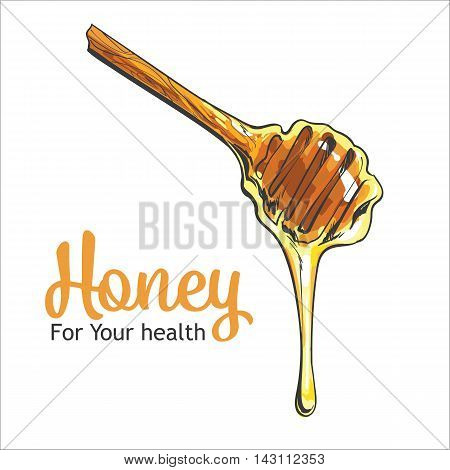 Wooden honey dipper, sketch style vector illustration isolated on white background. Transparent liquid golden colored honey dripping from a wooden honey dipper