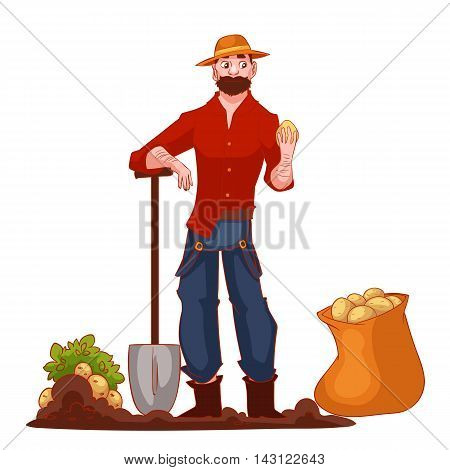 Man harvesting potato in the field, cartoon style vector illustration isolated on white background. Digging potato in the fall time, countryside gardening, harvest time concept
