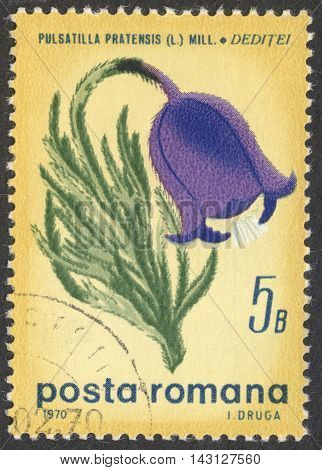 MOSCOW RUSSIA - CIRCA LUNE 2016: a post stamp printed in ROMANIA shows a Pulsatilla pratensis flower the series
