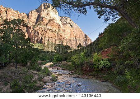 Crek in Zion National Park Utah West America