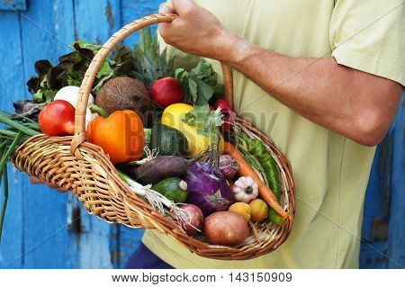 Healthy food background. photo of different vegetables of big basket in hand