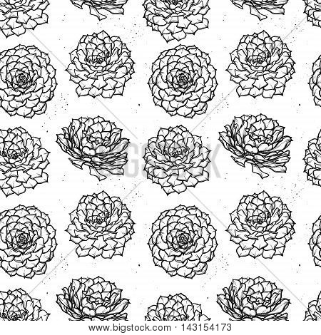 Hand Drawn Vector Seamless Pattern With Succulents. Background. Perfect For Wedding Invitation, Gree