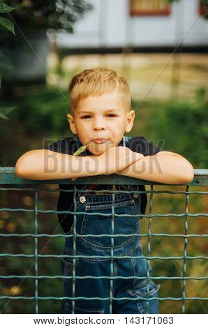 Portrait Of Smiling Seven Year Old Boy. Seven Year Old Boy  With