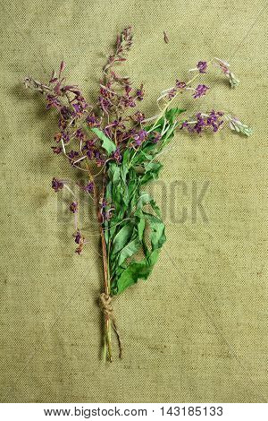 Fireweed.Dried herbs for use in alternative medicine.Herbal medicine phytotherapy medicinal herbs.For preparation of infusions decoctions tinctures powders ointments tea. Background green cloth