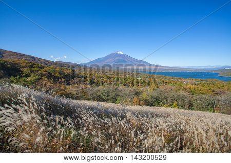 Mountain Fuji and Yamanaka lake in autumn season