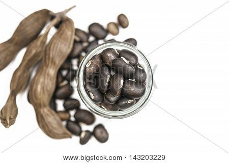 The seeds of Velvet bean or Mucuna pruriens have been used for traditional medicine selective focused over white background with copy space