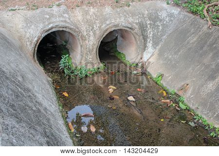 Drain water. Dirty drain and water pollution.