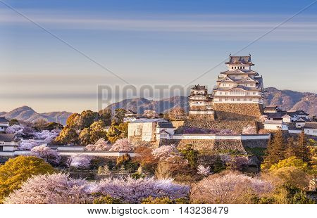 Japan Himeji castle White Heron Castle in beautiful sakura cherry blossom season